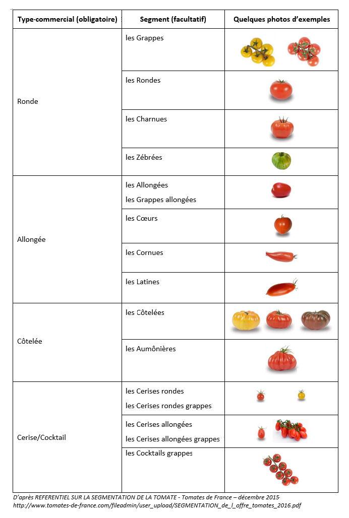 Referentiel tomates 2016