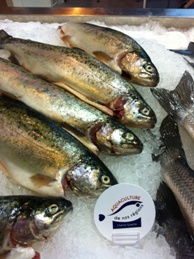 Truites charte aqauculture de nos regions