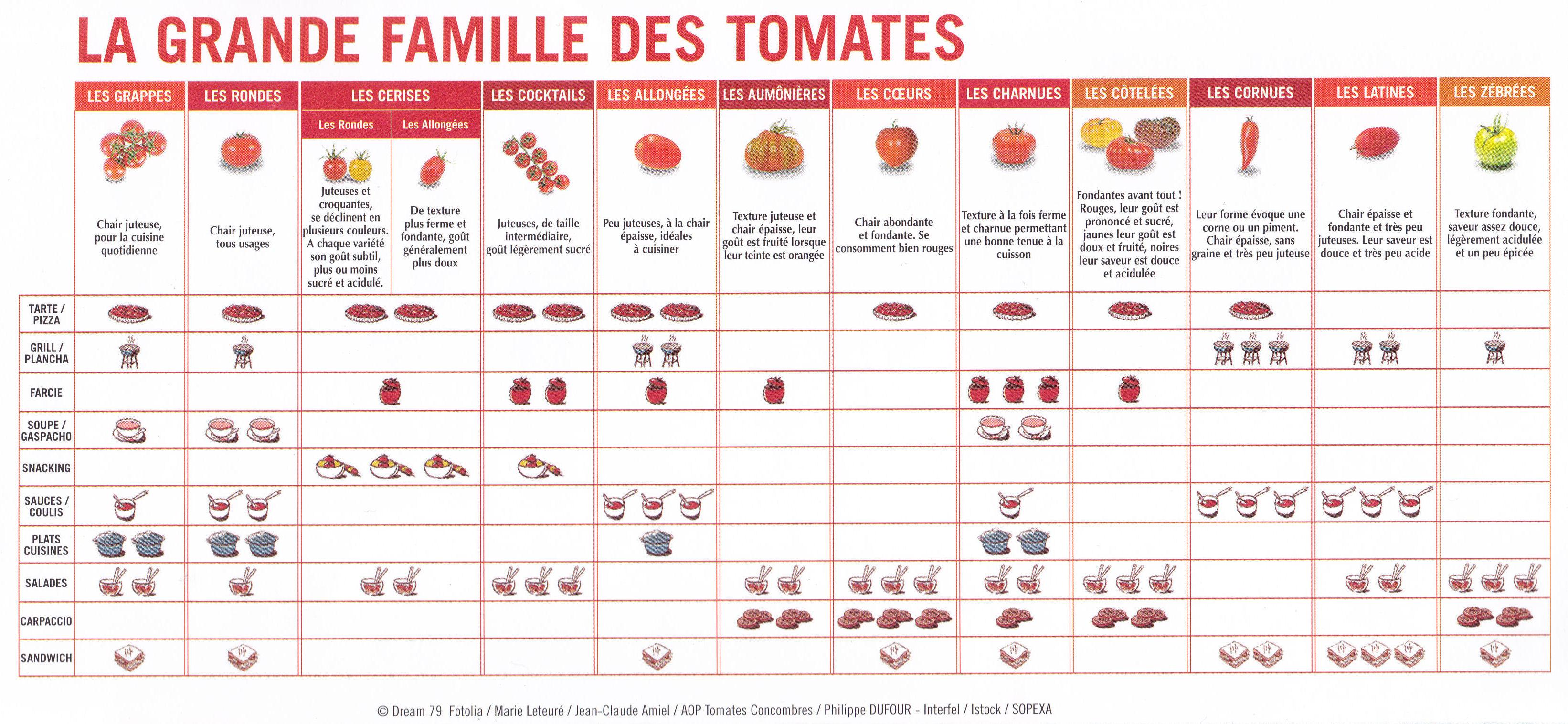 Usage tomates grande famille