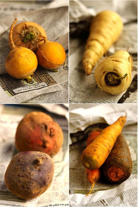 légumes oubliés